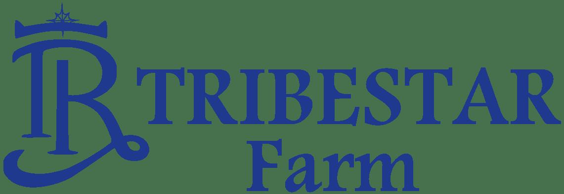 2020 Tribestar Farm Moldova - Tribestar.md
